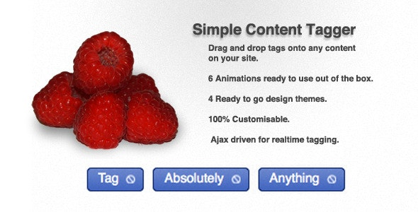 Simple Content Tagger - CodeCanyon Item for Sale