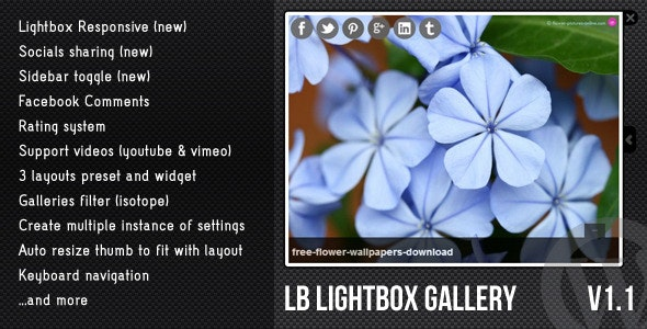 WordPress Lightbox Gallery - CodeCanyon Item for Sale