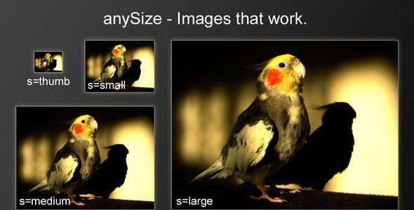 anySize - Caching image resizer