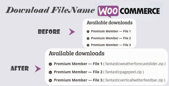 Download File Name for WooCommerce