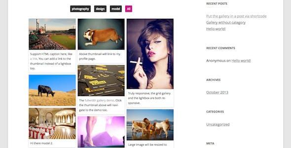 Responsive Pinterest Grid Gallery WordPress Plugin