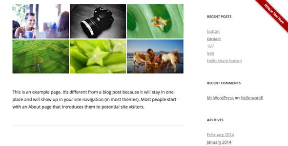 Ribbon Panel WordPress Plugin
