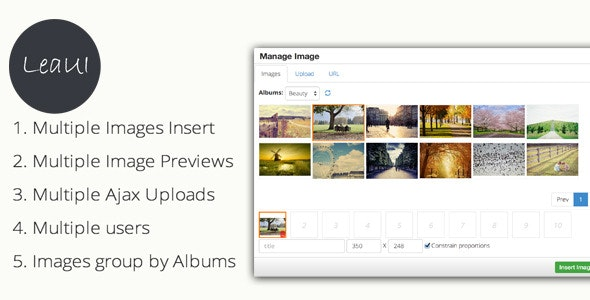 TinyMCE4  Album  Image Manager - CodeCanyon Item for Sale